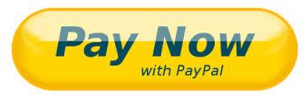 Image result for pay now button